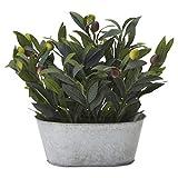 ドウシシャ(DOSHISHA) 人工観葉植物 グリーン 約29.0cm オリーブ ブリキポット HAC-048の写真