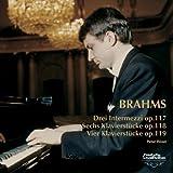 ブラームス:ピアノ独奏曲全集V