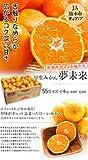 みかん 夢未来 早生みかん 4kg SSサイズ 48~64個 JA熊本市 熊本 産地直送 市場出荷 (出荷予定時期:11月5日~11月18日)