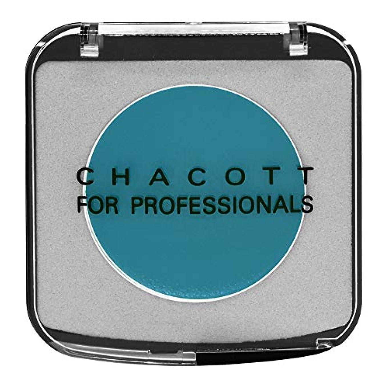 計算する雇用非難CHACOTT<チャコット> ヴァリエペイント<ライニング> 512.スカイブルー