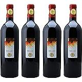 [4本セット] ロッソ ピチェーノ スペリオーレ ロッジョ デル フィラーレ(Rosso Piceno Superiore Roggio del Filare) 2013 赤 イタリア 750ml×4本