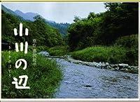【映画パンフレット】 『小川の辺』 出演:東山紀之.菊地凛子.勝地涼.片岡愛之助