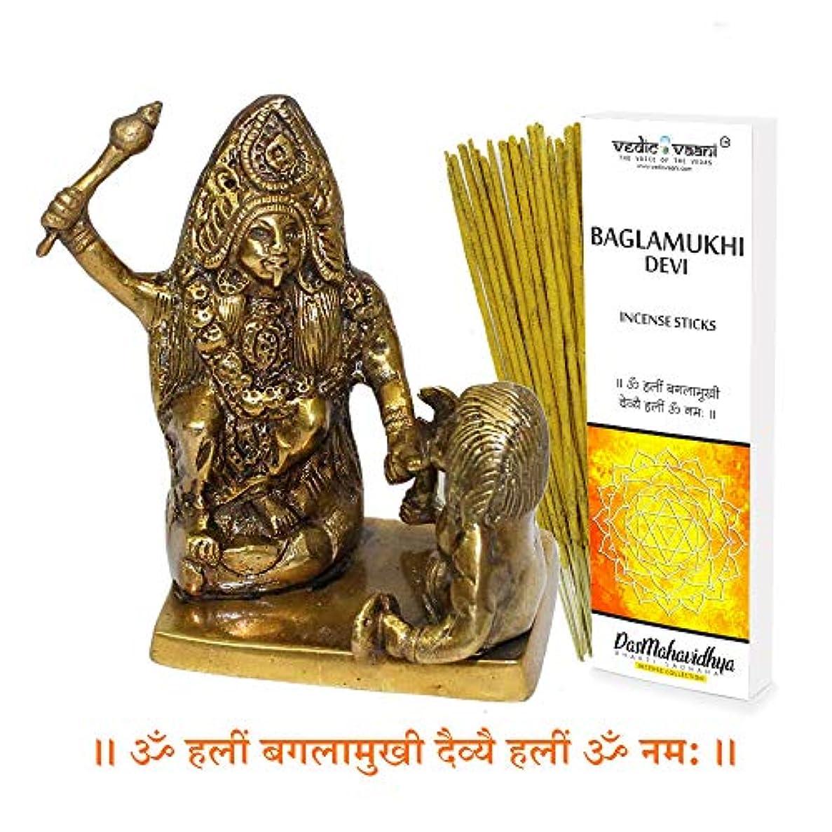 胴体回答うがい薬Vedic Vaani バグラムキ像 バガラムキ香スティック付き