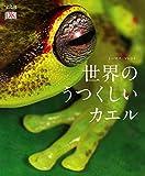 宝島社 トーマス・マレント 世界の美しいカエルの画像