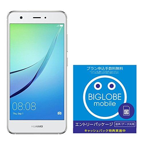 Huawei 5.0型 nova SIMフリースマートフォン ミスティックシルバー 日本正規代理店品 NOVA/MYSTIC SILVBIGLOBE SIM エントリーパッケージ ドコモ対応SIMカード データ通信/音声通話 (ナノ/マイクロ/標準SIM)[iPhone/Android] 最大 20,000円キャッシュバック EP-1