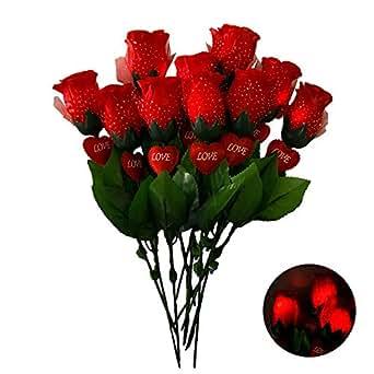 Hirayuki 光るバラ 10本セット バラ レッド ブルー ピンク サプライズ 演出 デート 告白 結婚式 クリスマス パーティ LEDスイッチ式 造花 花束 製品保証付 Red 10本