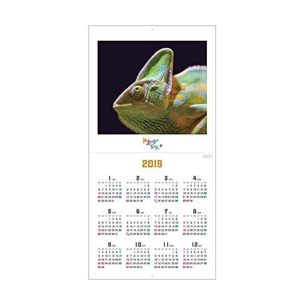 トカゲちゃん 2018年 カレンダー 壁掛け...の紹介画像16