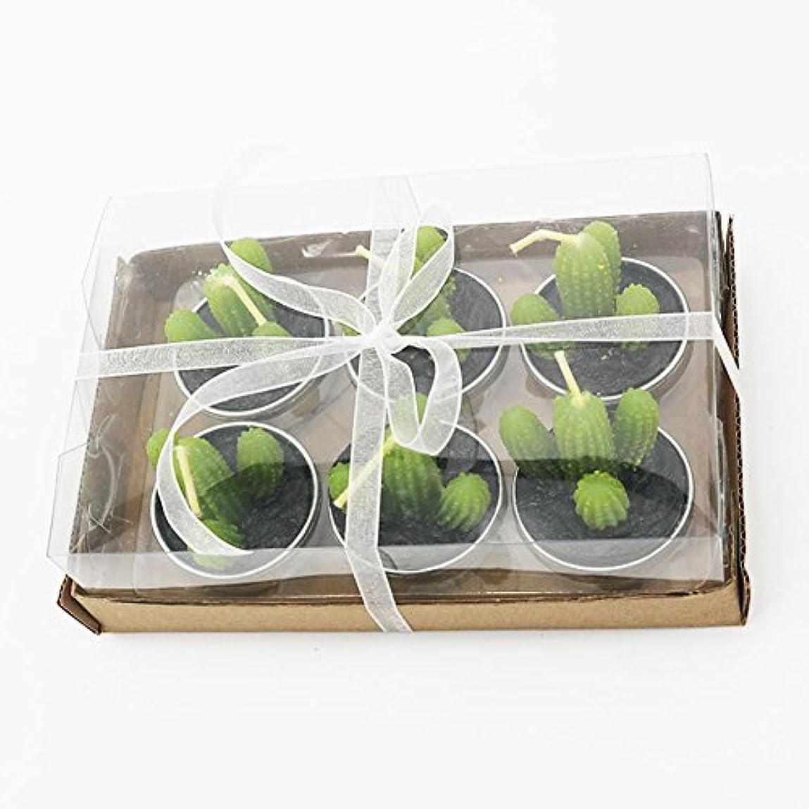 充実農業のソフィーLiebeye キャンドル 多肉植物スモークフリーのクリエイティブなキャンドル100%自然のワックスかわいい模造植物フルーツの形状低温キャンドル 6個/箱 カクタス?ボックス