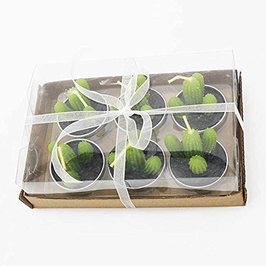 Liebeye キャンドル 多肉植物スモークフリーのクリエイティブなキャンドル100%自然のワックスかわいい模造植物フルーツの形状低温キャンドル 6個/箱 カクタス?ボックス