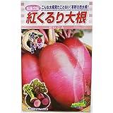 大根 種 【 紅くるり 】 種子 小袋(約3ml)