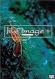 live image+ ― 010531 ― [DVD]