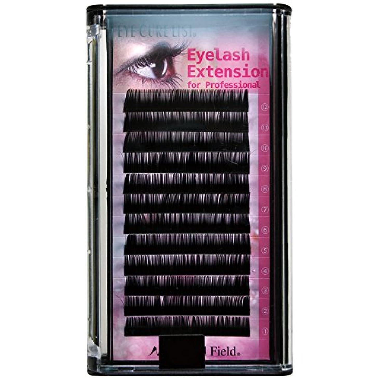 保護秘密の窓を洗うNFS プロ用まつげエクステ 97129 J 0.15*13mm