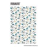 西川(Nishikawa) ガーゼケット ブルー 140×190㎝ シングル PEANUTS スヌーピー サーフィン ニットケット 2275-55901