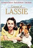 名犬ラッシー~ラッシーの勇気~[DVD]