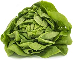 Fresh Produce Butterhead Lettuce, 200g