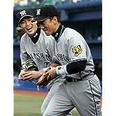 猛虎の魂 金本知憲&新井貴浩 大記録への軌跡 [DVD]