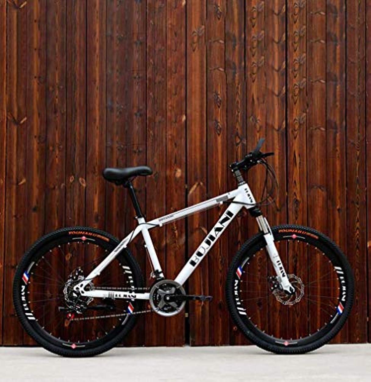誓い遺伝子気候の山メンズアダルトマウンテンバイク、ダブルディスクブレーキオフロードスノーバイク、少年スチューデントシティロードバイク、24インチホイールビーチ自転車