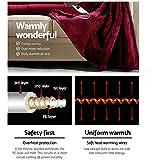 Scenic Bedding Washable Heated Electric Throw Rug Fleece Snuggle Blanket 3 CLR