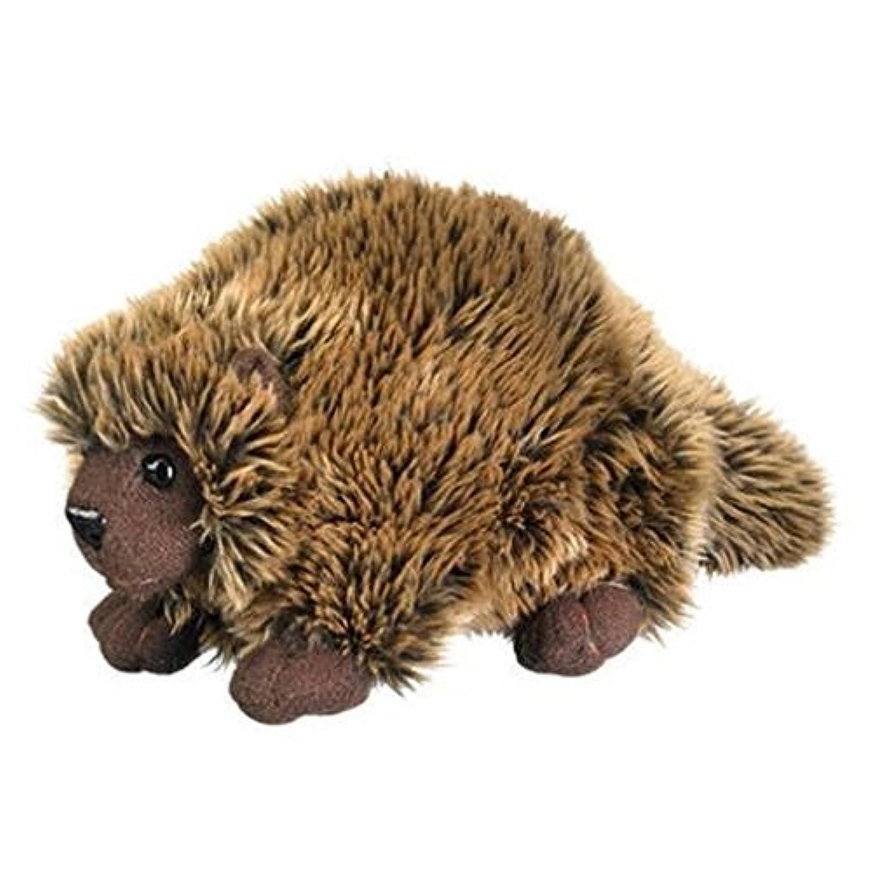 Porcupine 9