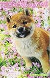 天国の犬ものがたり / 堀田 敦子 のシリーズ情報を見る
