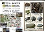 日本の石ころ標本箱: 川原・海辺・山の石ころ採集ポイントがわかる 画像