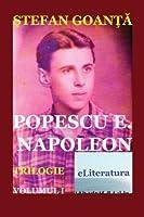 Popescu E. Napoleon: Roman