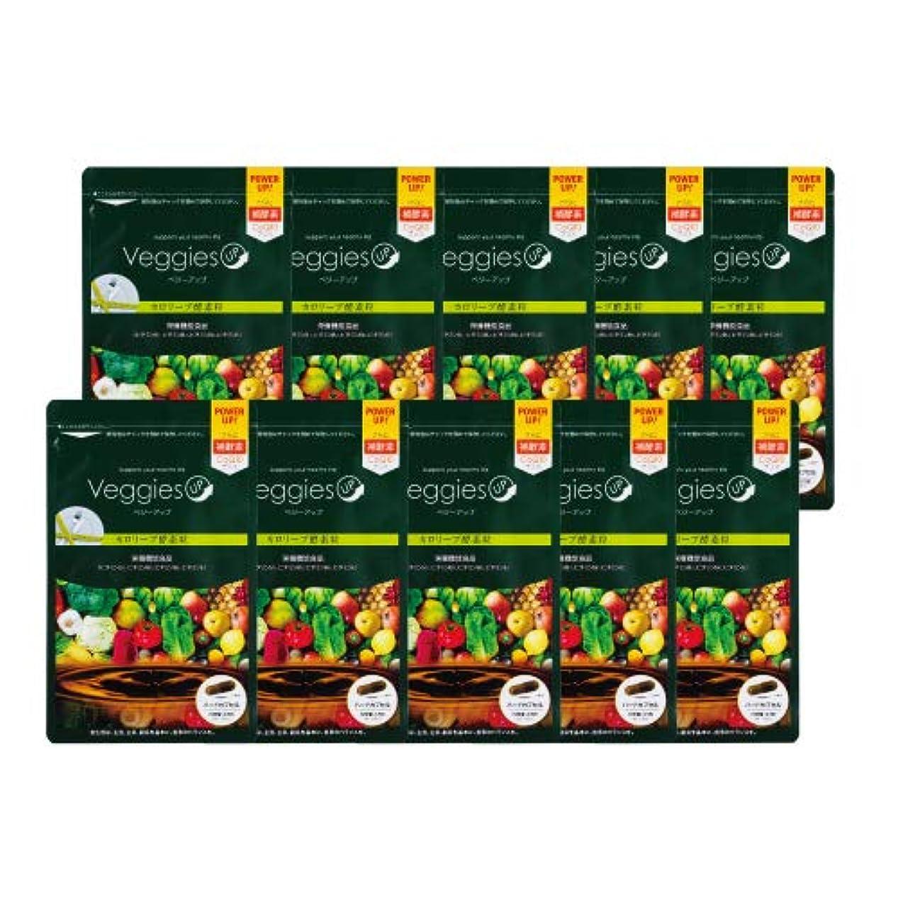 ひも極小週間ベジーアップ酵素粒カロリーブ 93粒 10袋セット ダイエット 酵素サプリ 酵素ダイエット サラシア コエンザイムQ10 竹炭