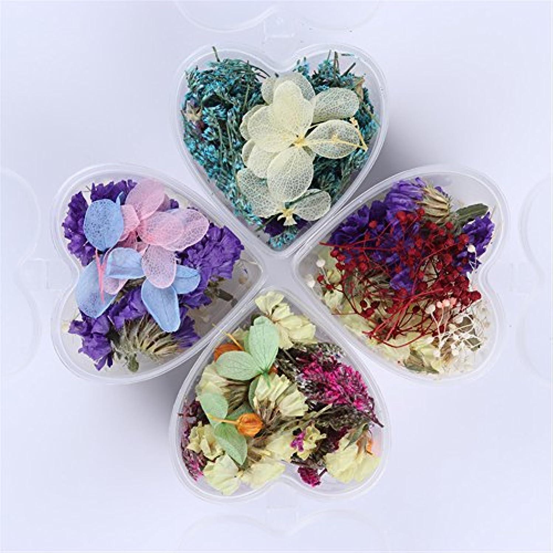 BORN PRETTY 押し花 ドライフラワー レジン入れ レジン型 アジサイ ハンドメイド 3Dデコレーション 4ボックスセット DIYデコレーション