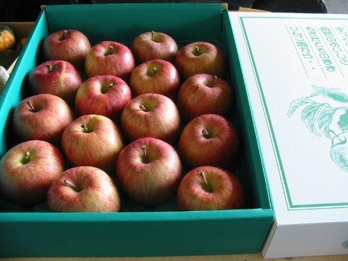 青森産 ふじ 大玉13〜16玉入り 5kg詰め(化粧箱入り)リンゴ りんご 林檎