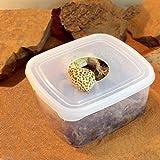 ウェットボックスシェルター Mサイズ 爬虫類 ヘビ ヤモリ 産卵床 シェルター