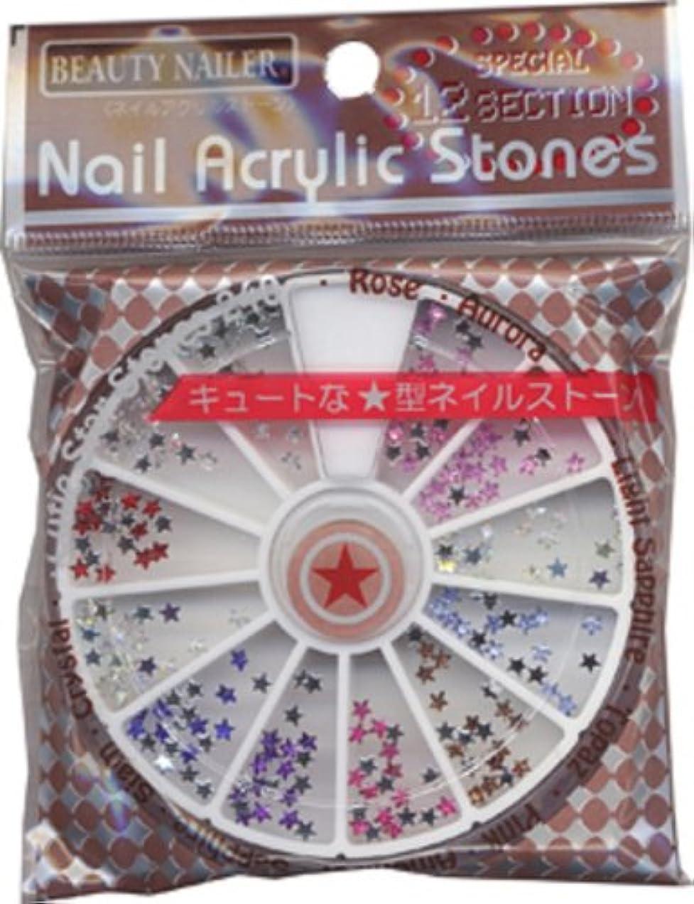 プラカード鼓舞する多数のBEAUTY NAILER ネイルアクリルストーン NAA-11 スターストーン9色