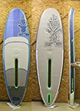 "STAR BOARD(スターボード) WINDSUP INFLATABLE DX35"" ウインドサーフィン 兼 SUP ボード[BLUE/WHITE/GREEN ]10'0"" 付属品付き インフレータブルWIND SUP"