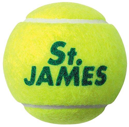 DUNLOP(ダンロップ) 硬式 テニス ボール セント・ジェームス プレッシャーライズド ボール 4個入りボトル STJAMESI
