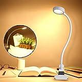 Vorally クリップライト USB充電式 電球色/昼白色/自然光 デスクライト 3色調色 11段階調光 記憶機能付き 360°角度調整 ベッドサイドランプ (ホワイト)