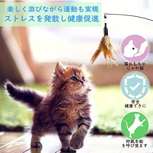 【飼い猫やプレゼントに】猫グッズのおすすめ人気ランキング20選