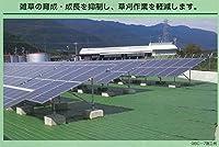 防草シート グランドバリアクロス7 1.0m×50m モスグリーン/ブラック (1本)