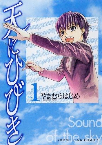 天にひびき 1巻 (ヤングキングコミックス)の詳細を見る