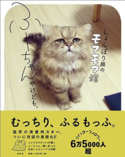しょんぼり顔のモフモフ猫 ふーちゃんやけども。の詳細を見る