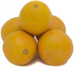 Fresh Produce Valencia Orange, 5 Count