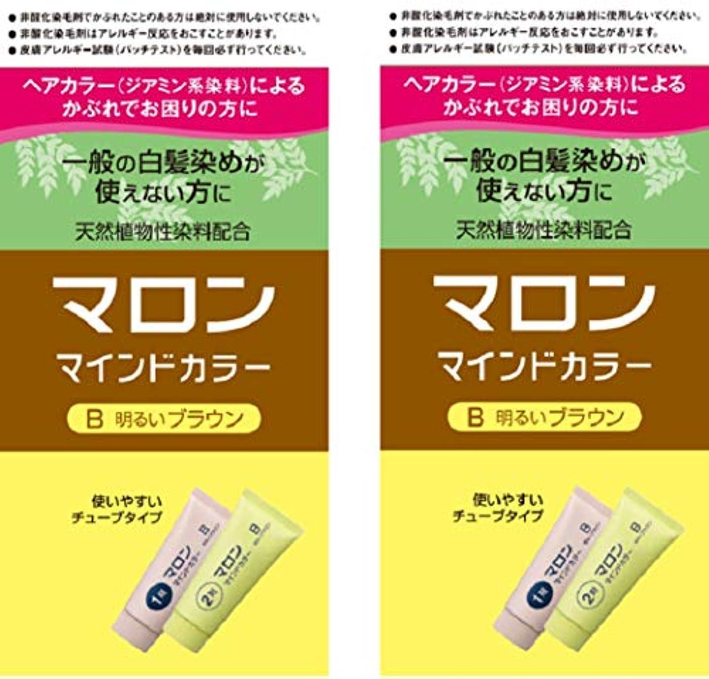 整理する遺伝的ストロー【Amazon.co.jp限定】 マロンマインドカラーB明るいブラウン 2個パックおまけ付き[医薬部外品] ヘアカラー セット (70g+70g)×2+おまけ