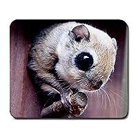 マウスマット、スカイリスマウスパッドMP1075