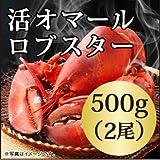 活 オマール ロブスター(500gx2尾)