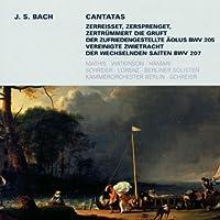 Secular Cantatas Bwv 205 207 by J.S. Bach (2008-12-01)