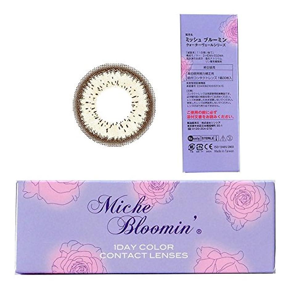雑種怪物サリーミッシュブルーミン Miche Bloomin 1day 11 ペールジャスミン 10枚入 2箱セット (PWR) -5.25