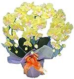 光触媒 枯れない胡蝶蘭 3本立 (造花) 黄