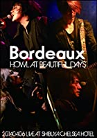 HOWL AT BEAUTIFUL DAYS -20140406 LIVE AT SHIBUYA CHELSEA HOTEL- [DVD](在庫あり。)