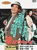 男はつらいよ フーテンの寅〈シリーズ第3作〉 [DVD]