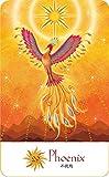 太陽と月の魔女カード with フェニックス&ドラゴン 画像