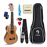 Lightwish - 23 Mahogany Concert Ukulele Aquila Strings+Nylon Strap+Pick+Pick Container+Carry Bag+Aroma Tuner+KAZOO+Backup Strings [並行輸入品]