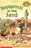 Footprints in the Sand (Hello Reader Level 1)